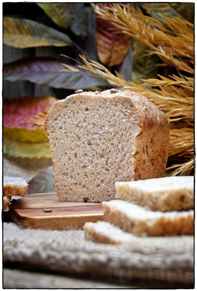 pan de semillas 2.JPG
