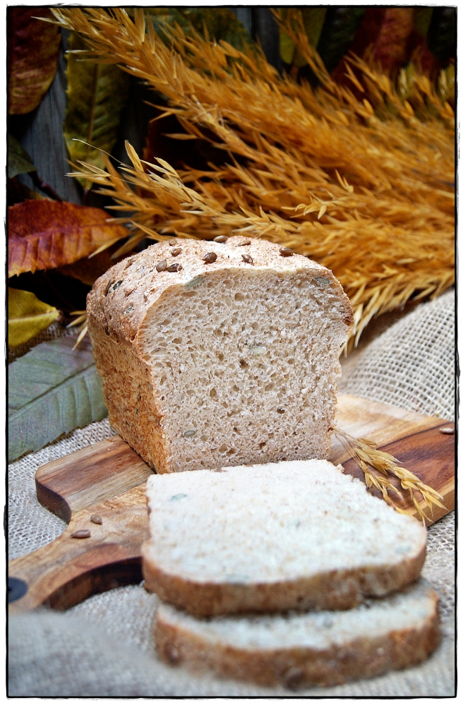 pan de semillas 3.JPG