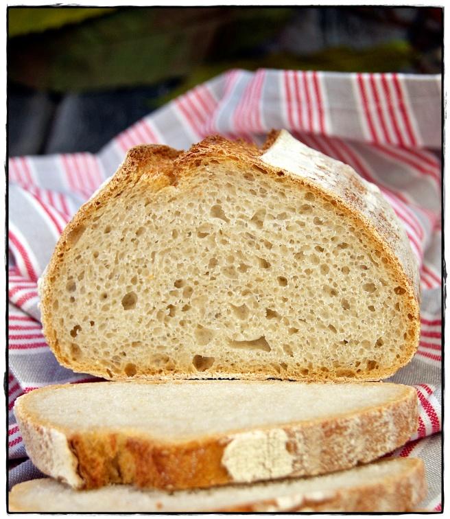 hogaza de pan con masa madre 2.JPG