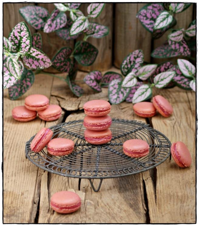 macarons de frambuesa 2.JPG