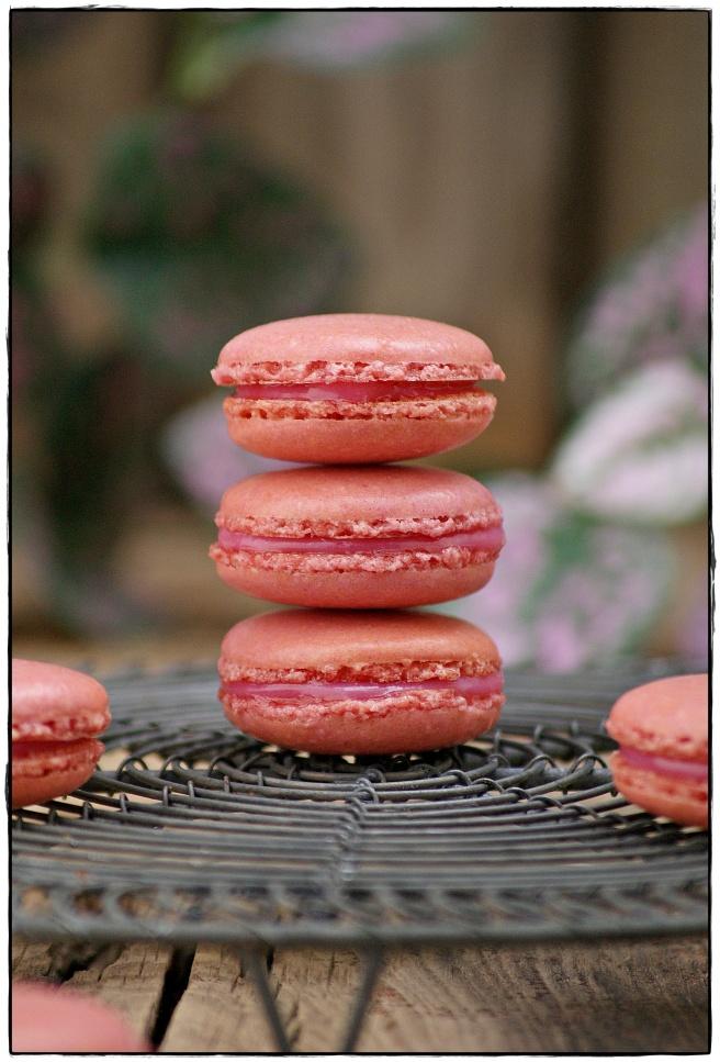 macarons de frambuesa 4.4.JPG